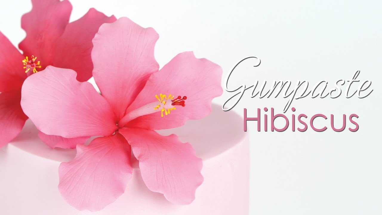 Gumpaste Hibiscus Flower Tutorial Youtube