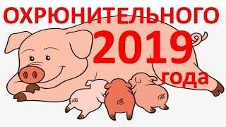 видео Животное 2019 Какого по календарю Животного год - Свинья/Кабан