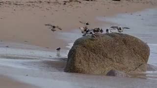 Lendemain de tempête sur la Côte des Légendes