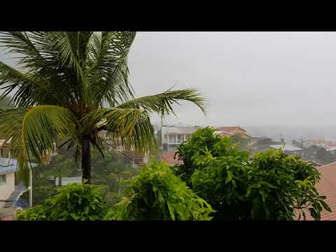 Le cyclone MARIA : effets post-cyclone