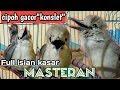 Cipoh Gacor  Konslet  Full Isian Kasar Masteran Burung  Mp3 - Mp4 Download