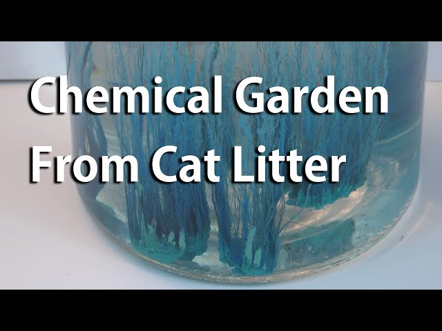 Make a Chemical Garden From Cat Litter, Drain Opener, and Root Killer