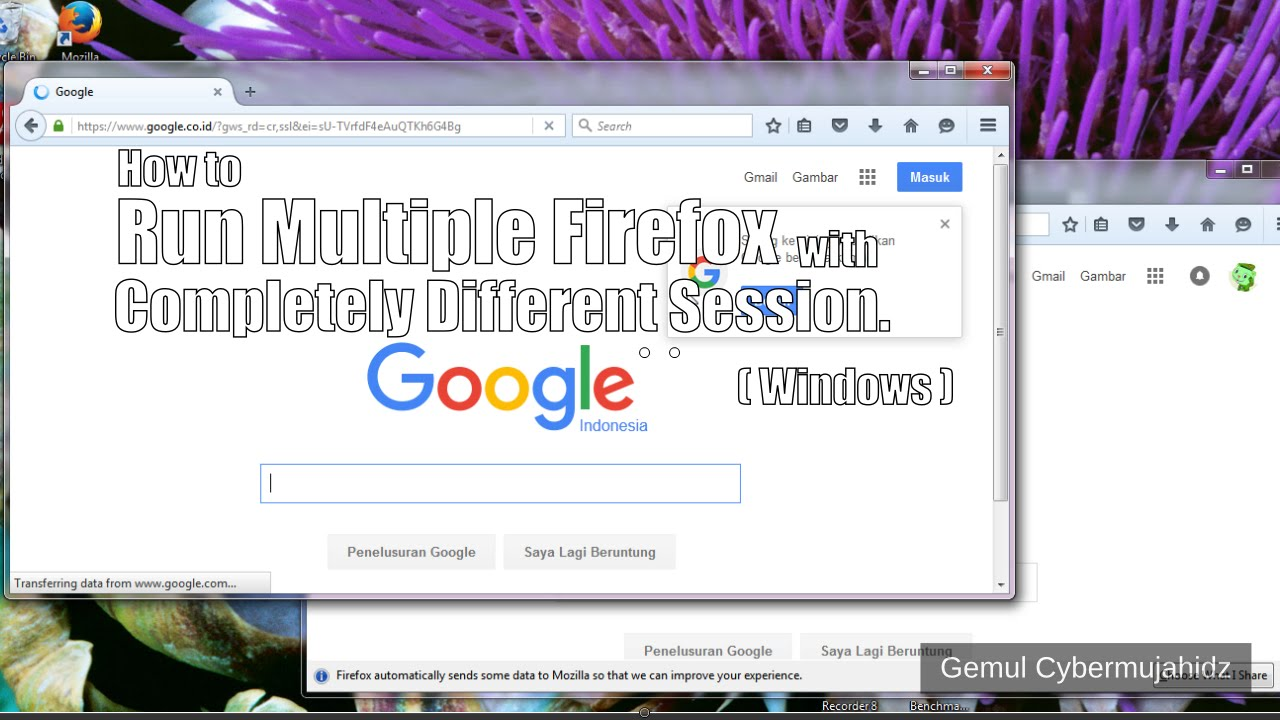 How to run multiple firefox browser with completely different independent  session