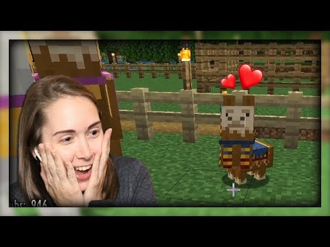 Baby Llamas In Minecraft (Oh, And House Renovations) [8]