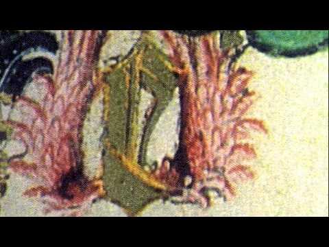Monteverdi - L'Incoronazione di Poppea - Speranza tu mi vai - Act 1
