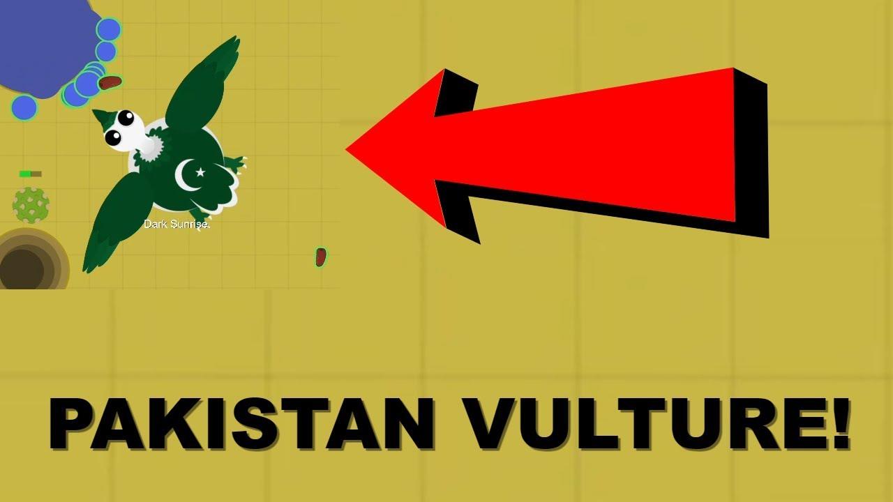 Download PAKISTAN VULTURE GAMEPLAY!! // NEW RARE!! // BETA.MOPE.IO