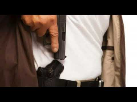 """House Passes """"Mixed Bag"""" Concealed Carry Reciprocity/Background Check Bill"""