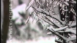 Зима берет белые краски