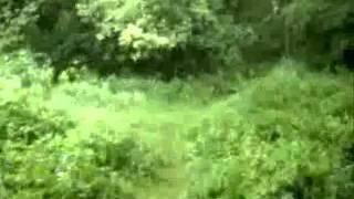 ZARACH BAAL THARAGH Han som reiste 2th version (BURZUM cover)