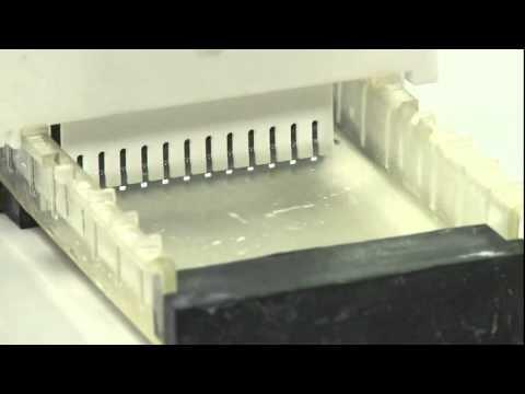 Electroforesis en gel de agarosa.© UPV