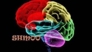 Shmoo aka Sedative - Mała Rzecz