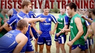 January 31, 2013 - Fists Fly At North Melbourne Training