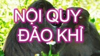BE NA TINH NGHICH- Tập đọc lớp 2 - Nội quy đảo khỉ -giọng đọc bé Na