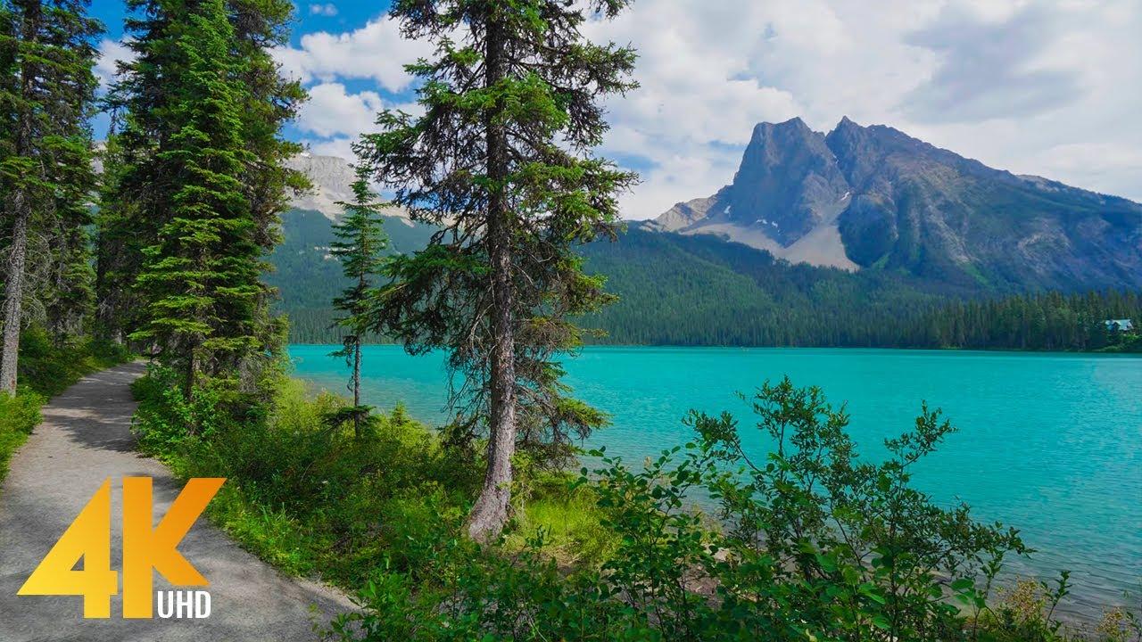 2 HRS Virtual Walk around Emerald Lake, Yoho National Park - 4K Nature Walking Tour + Birds Chirping
