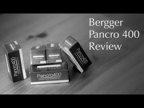 Bergger Pancro 400 - The Ultimate Film Review