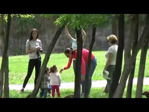 Парк Туманяна в Ереване весной,Tumanyan Park,Yerevan, Armenia