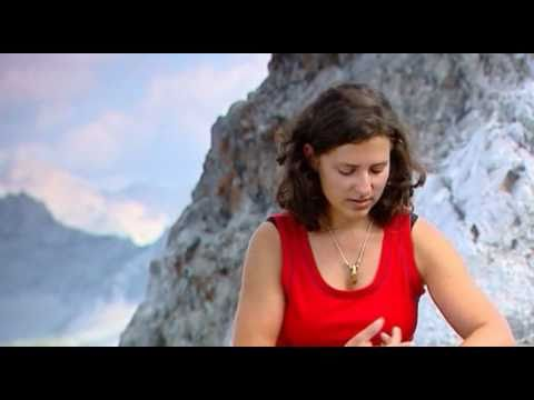Der Steinbock in den Tiroler Alpen 1/2