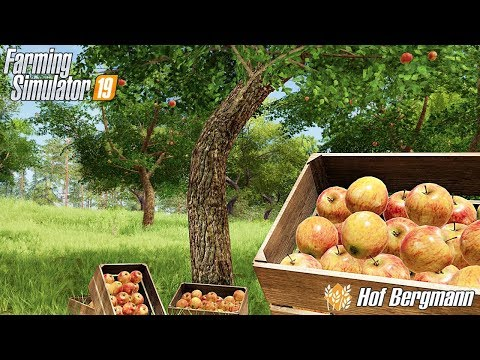 Owoce Z Dzikiego Sadu. -  Hof Bergmann -  ☆ Farming Simulator 19 ☆  #33 ㋡ Anton