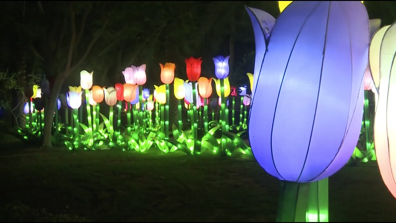 Dubaiu0027s Light Garden Opens To Public   YouTube