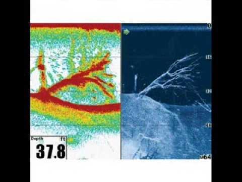 hummingbird fish finder - youtube, Fish Finder