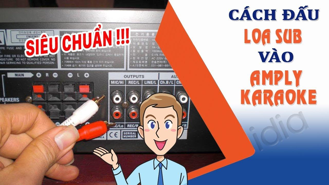 Bạn biết bao nhiêu cách đấu loa sub karaoke vào amply karaoke 2 kênh đúng kỹ thuật? – 0902699186