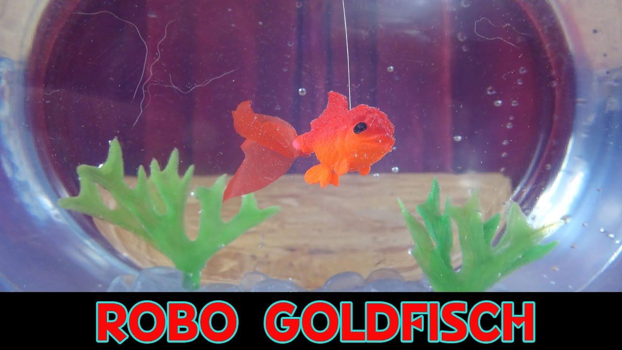 1x robo goldfisch im glas bitte youtube. Black Bedroom Furniture Sets. Home Design Ideas