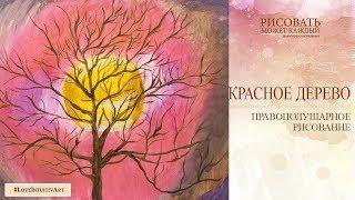 Урок№1 БЕСПЛАТНЫЙ  Правополушарное рисование с Аленой Кириленко