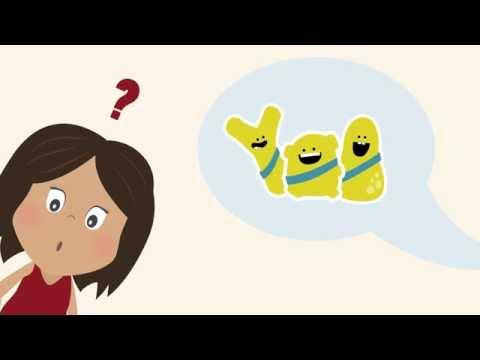 Understanding Pre and Probiotics