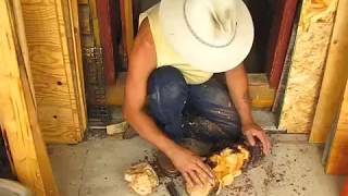 Bushcraft - How To Make A Wood Bowl From Spruce Wood And Fire With Ross Hinter