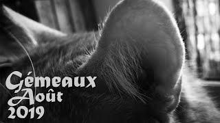 """Gémeaux Août 2019: """"Le vertige du succès""""."""