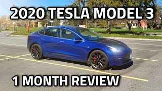 2020 Tesla Model 3 Review - After One Month!