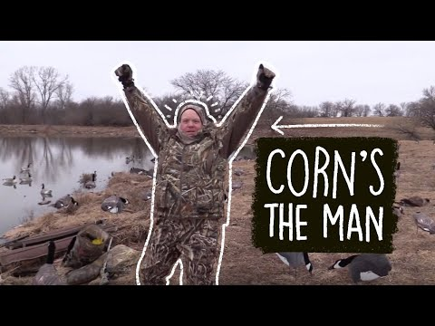 Download lagu terbaik Goose Hunting 2018: An Afternoon with Corn online