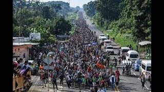 ILLEGAL IMMIGRANT CARAVAN/AND BLACKS MUST GET REPARATIONS FIRST