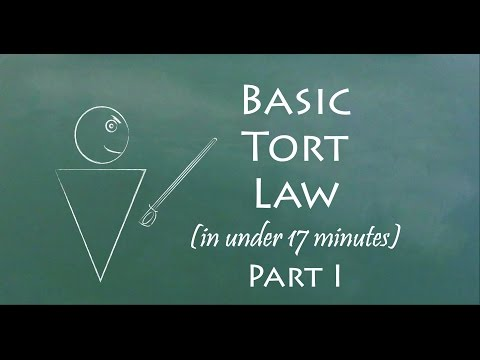 Understand Tort Law in 17 Minutes (Part I)