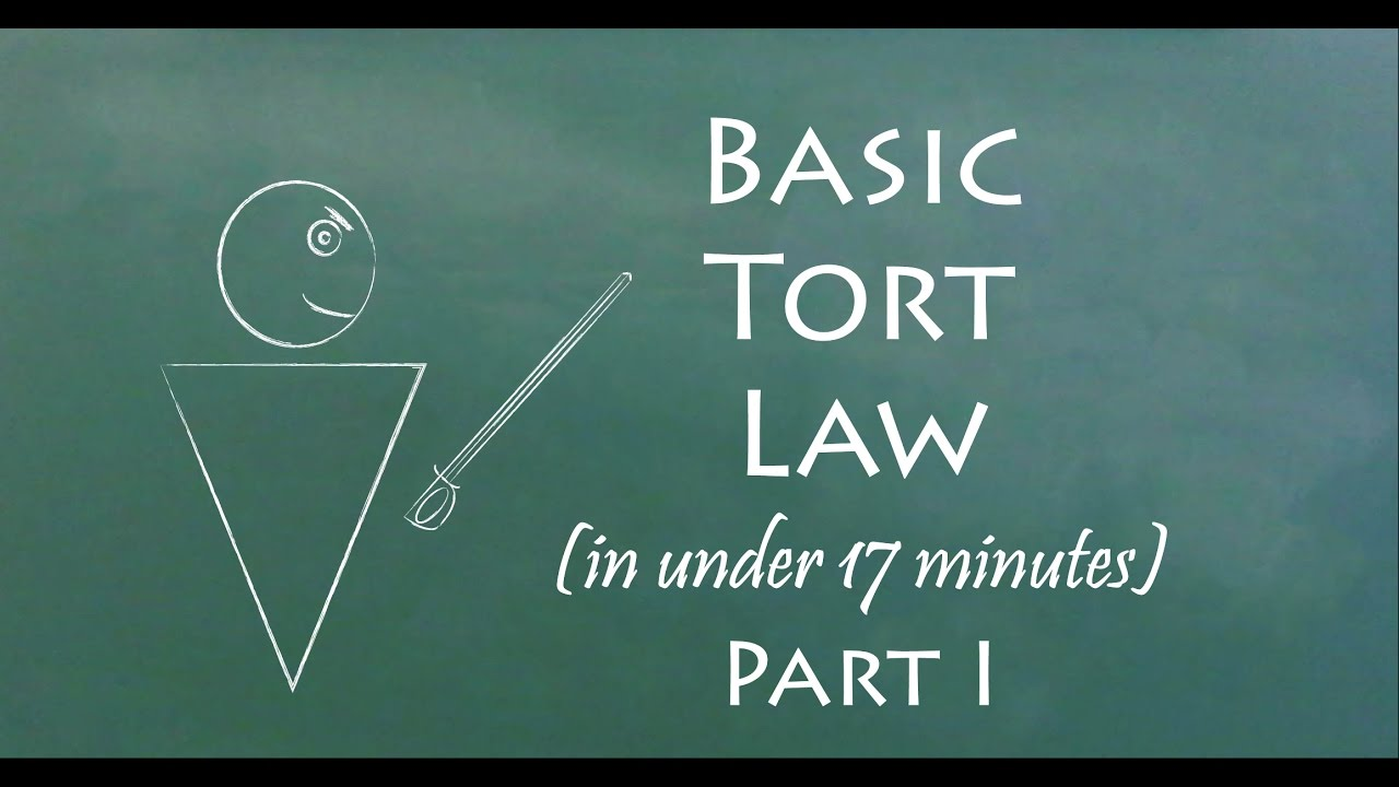 Tort Law - video dailymotion