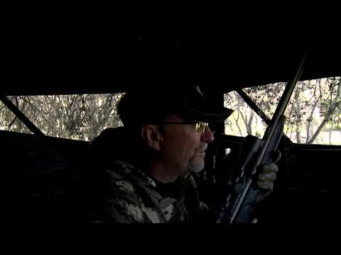 Doe Hunt with TC Impact Muzzleloader