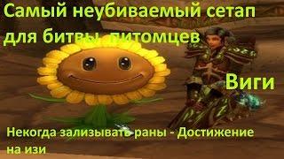 WoW Виги - бои питомцев Неубиваемый сетап / Некогда зализывать раны - Достижение на изи