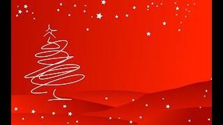 Top 60 Unusual Christmas Trees Ideas