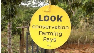 CONSERVATION AGRICULTURE FARMING IN KENYA -PAFID