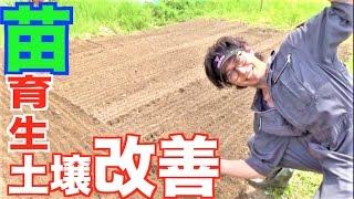 【むねお農園】苗植え準備編!すべて計算! thumbnail