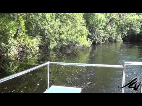 Homosassa Springs Wildlife State Park Tour - YouTube