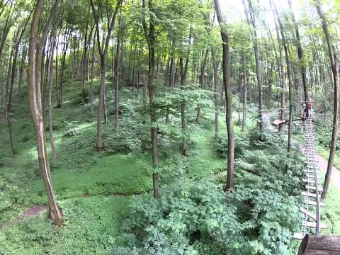 Treetop Trekking Horseshoe Valley Adventure Park (Blue course)