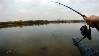 Ловля язя и леща на фидер осенью. Рыбалка 2020. Фидер на сильном течении