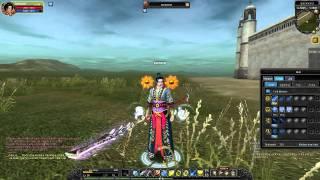 My Silkroad Online skills (lv 55 int spear)