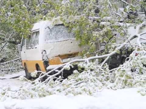Днепр 19 апреля: снежный буран и упавшие деревья