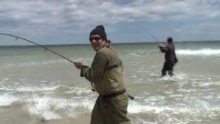 Topwater Bluefish Doubleheader-Island Beach State Park 5-10