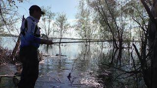 ПОПЛАВОК ЗАШЕВЕЛИЛСЯ ДУМАЛ КАРАСЬ Рыбалка в зарослях травы 2021