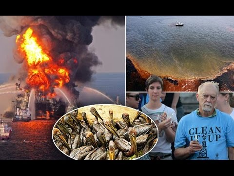 Look Back At The Devastating BP Oil Spill Review.Mp4