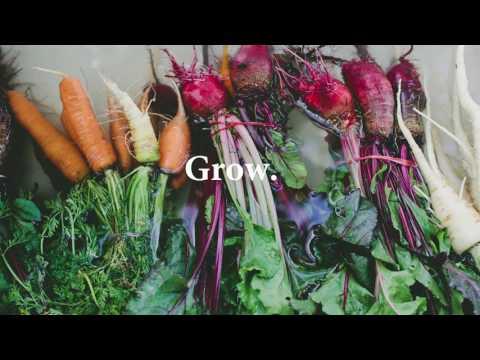 Matt and Lentil : Food, ecological farming & trade