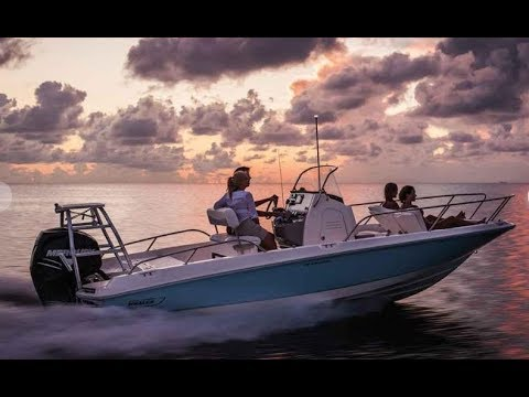 2020 Boston Whaler 210 Dauntless Boat For Sale at MarineMax Wrightsville  Beach, NC
